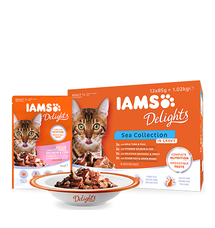 IAMS Delights Sea Collection in Gravy